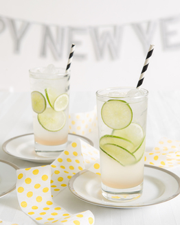 Gin, Ginger & Lime Spritzer